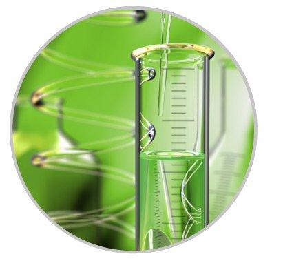 notre expertise Greentech