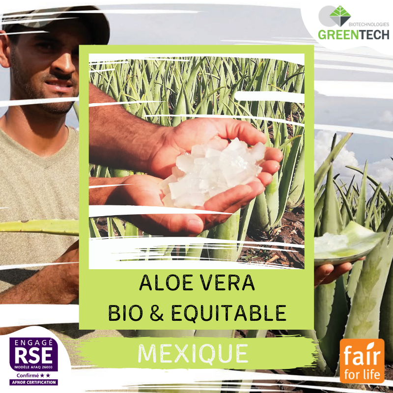 Our historical Supply Chains - #1 : Mexico, Organic & Fair-trade Aloe Vera