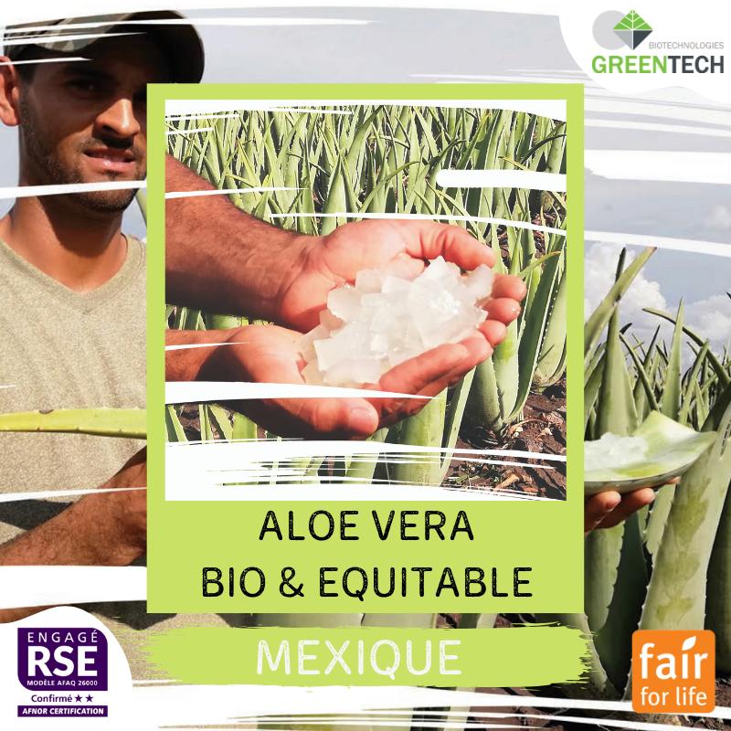 Nossas Supply Chains históricas - #1 : Mexico, Aloe Vera biológica e equitativa