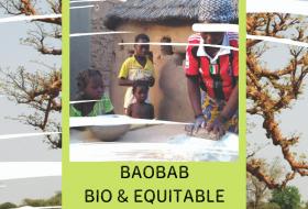 [NOS FILIERES HISTORIQUES] #2 – Burkina Faso : Huile et poudre de Baobab BIO