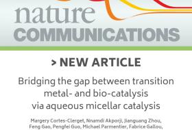 Nature Communication : Bridging the gap between transition metal- and bio-catalysis via aqueous micellar catalysis