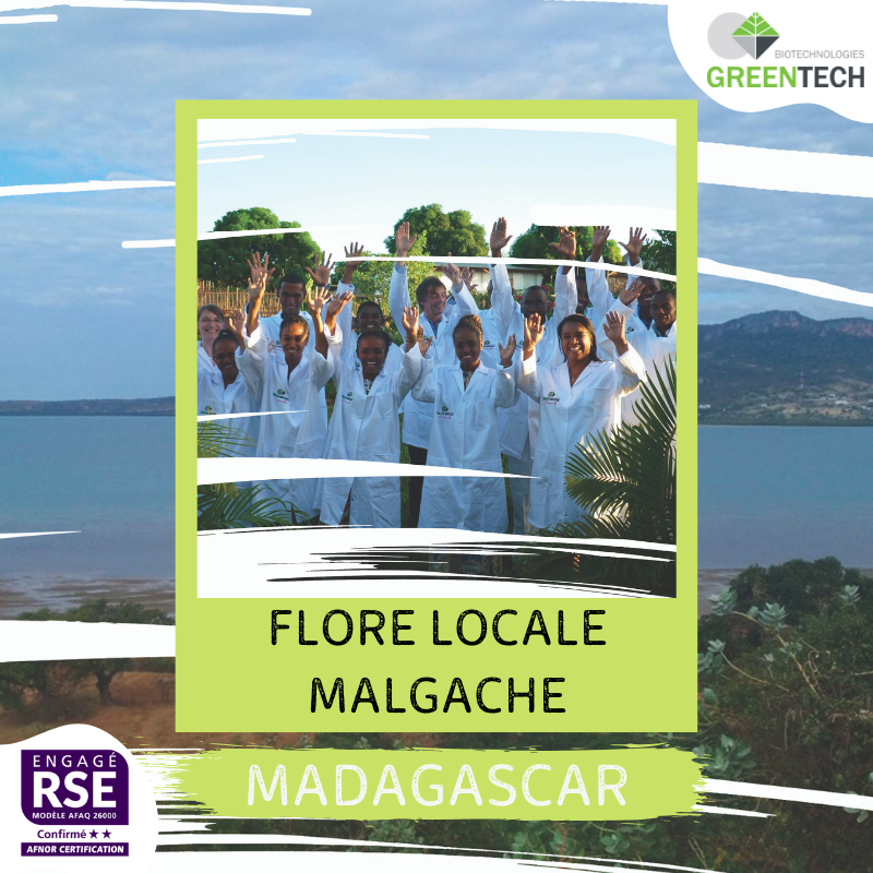 Our historical Supply Chains - #4 : Madagascar: Malagasy local flora