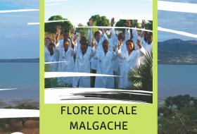 Nos filières historiques - #4 – Madagascar : Flore locale Malgache