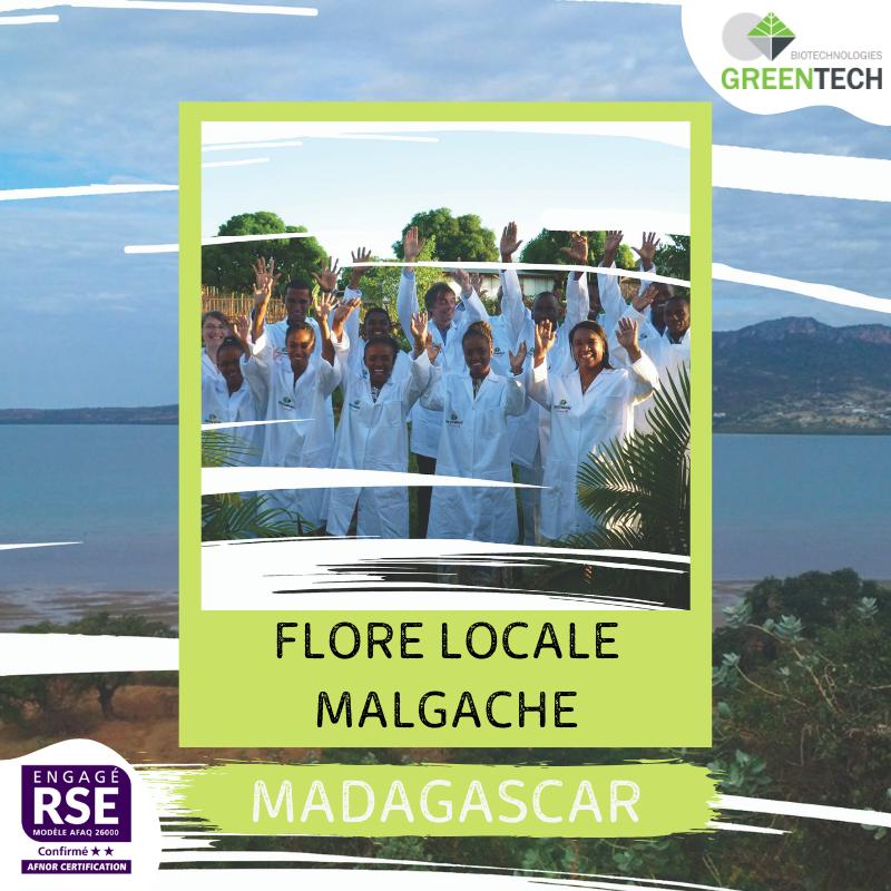 Nuestros proveedores históricos - #4 : Madagascar: flora local malgache