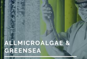 GREENSEA & ALLMICROALGAE