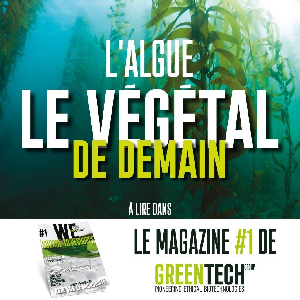 Revista GREENTECH # 1: Algas, o vegetal do futuro