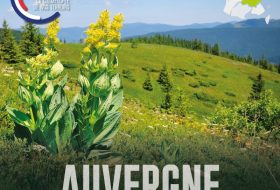 Tour de France GREENTECH - Etape 1: L'Auvergne