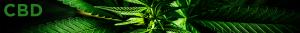 CBD Greentech