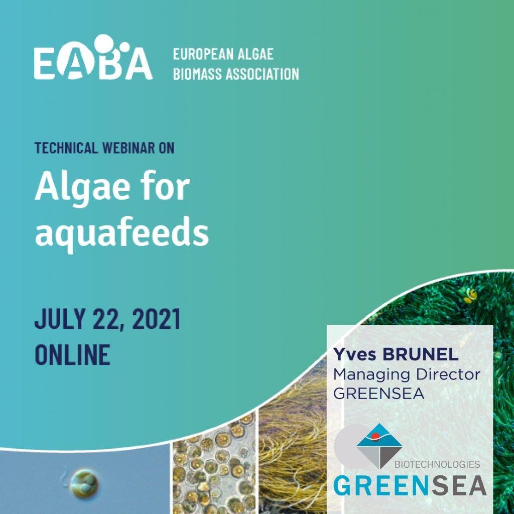 Greensea @EABA technical webinar on algae for aquafeeds