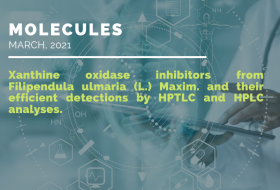 Xanthine oxidase inhib from Filipendula ulamria-image frontpage article